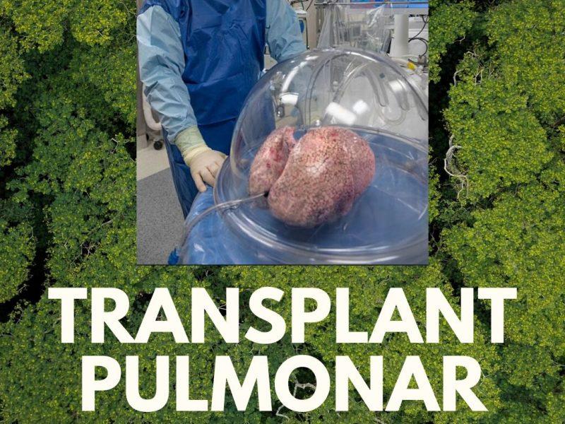 Transplantul pulmonar